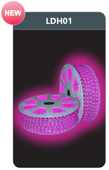 Đèn led dây cao áp ánh sáng hồng LDH01