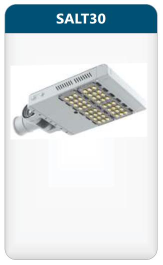 Đèn đường led 30w SALT30