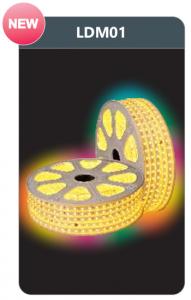 Đèn led dây cao áp đổi màu 6w/m LDM01