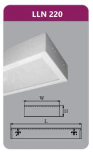 Máng đèn tán quang gắn nổi 2x9w LLN220