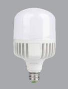 Bóng led công suất cao 80w SBNL880