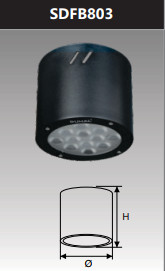Đèn led gắn nổi chiếu sâu 12w SDFB803